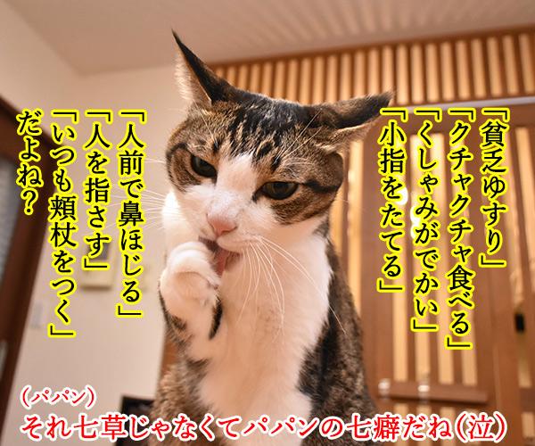 新年だからハッピーニューイヤーなのッ 猫の写真で4コマ漫画 2コマ目ッ