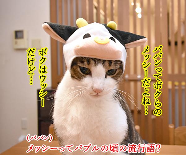 パパンはアッシーでメッシーなのッ 猫の写真で4コマ漫画 1コマ目ッ