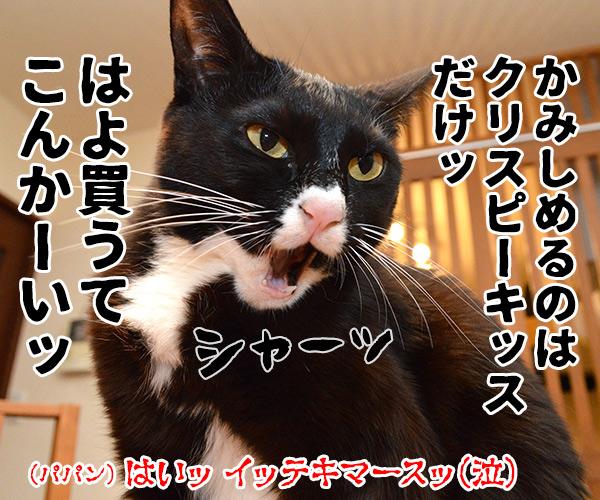 「にゃんにゃんにゃん」で猫の日なのよッ 猫の写真で4コマ漫画 4コマ目ッ