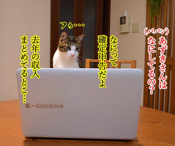 確定申告の期限が4月15日まで延長されてるのよッ 猫の写真で4コマ漫画 3コマ目ッ