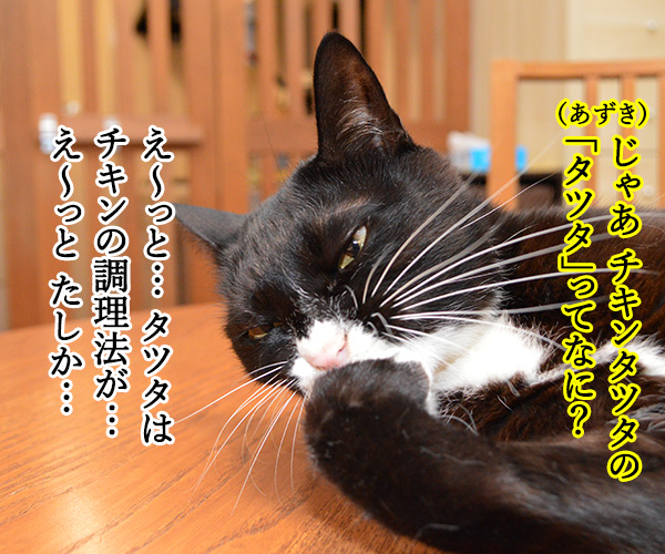 マクドナルドのチキンタツタが限定復活なのッ 猫の写真で4コマ漫画 3コマ目ッ