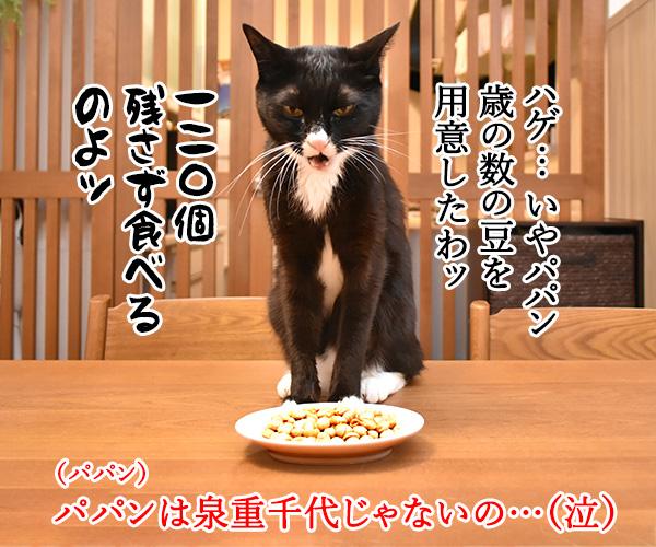 今日は節分だから歳の数だけ豆を食べるのよッ 猫の写真で4コマ漫画 2コマ目ッ