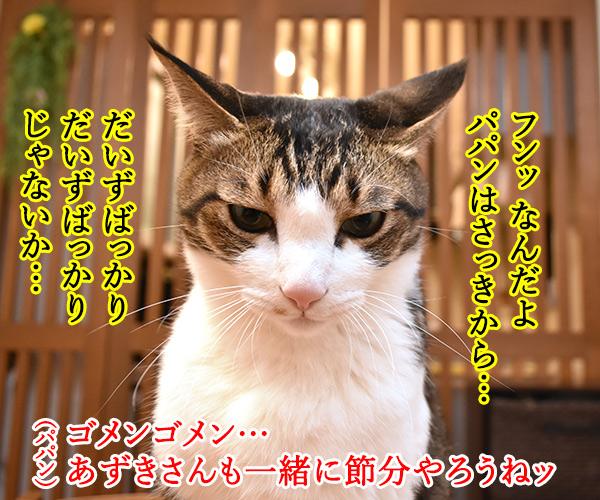 今日は節分だから歳の数だけ豆を食べるのよッ 猫の写真で4コマ漫画 3コマ目ッ