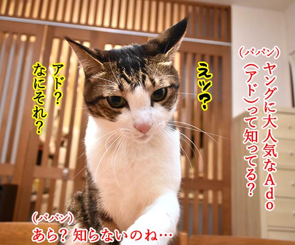 ヤングに大人気の「Ado」って知ってる? 猫の写真で4コマ漫画 1コマ目ッ