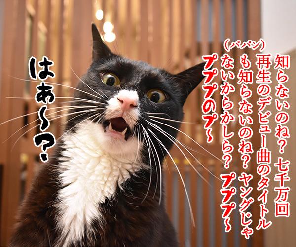 ヤングに大人気の「Ado」って知ってる? 猫の写真で4コマ漫画 3コマ目ッ