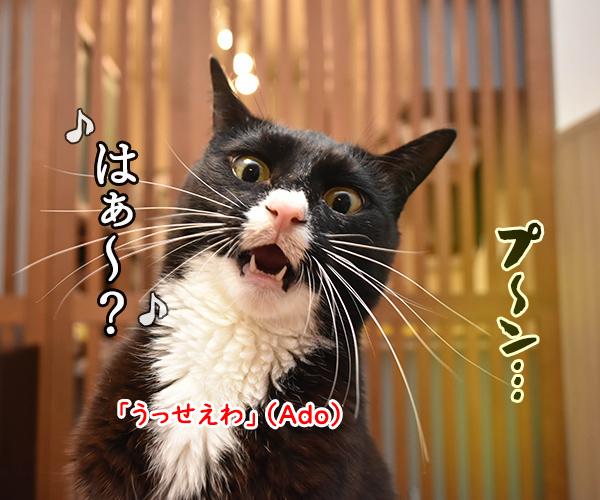 ウンチョスがクサイから「うっせえわ」を唄うのよッ 猫の写真で4コマ漫画 1コマ目ッ