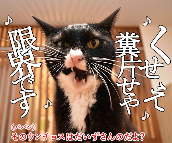 ウンチョスがクサイから「うっせえわ」を唄うのよッ 猫の写真で4コマ漫画 3コマ目ッ