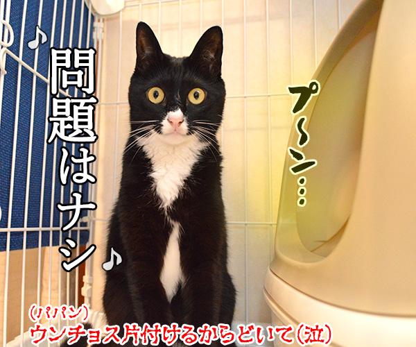 ウンチョスがクサイから「うっせえわ」を唄うのよッ 猫の写真で4コマ漫画 4コマ目ッ
