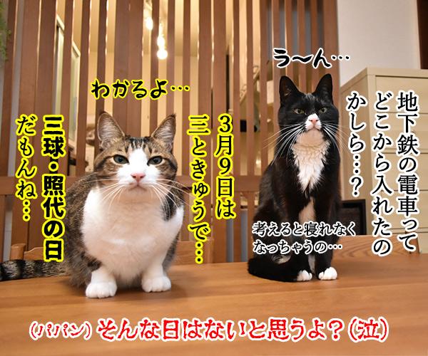 3月9日だから考え事しちゃうの… 猫の写真で4コマ漫画 4コマ目ッ
