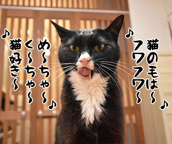アタチ達ッ ADボンバーズなのッ 其の二 猫の写真で4コマ漫画 6コマ目ッ