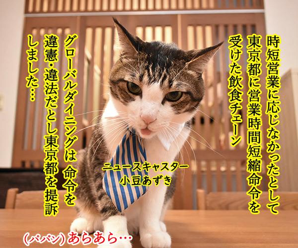 「時短命令は違憲」で都を提訴なのよッ 猫の写真で4コマ漫画 1コマ目ッ