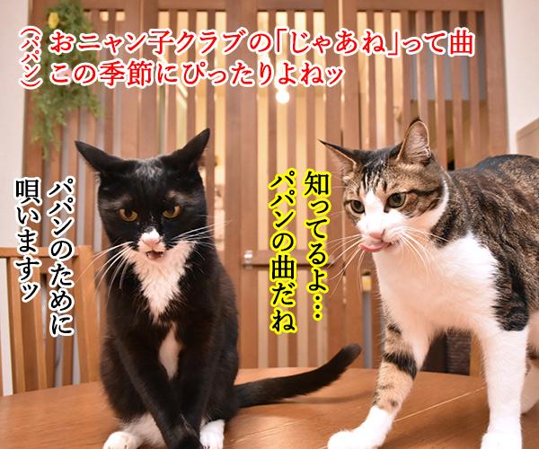 おニャン子クラブの「じゃあね」はこの季節にぴったりよねッ 猫の写真で4コマ漫画 1コマ目ッ