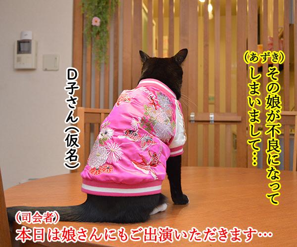 D子さん(人生相談) 猫の写真で4コマ漫画 3コマ目ッ