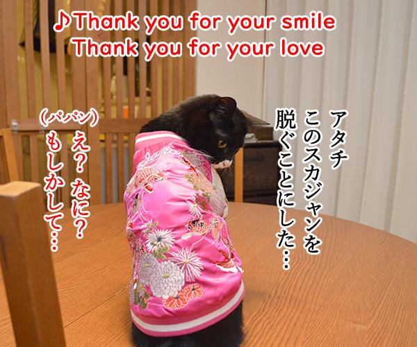Ⅾ子さん(さよならの向う側) 猫の写真で4コマ漫画 2コマ目ッ