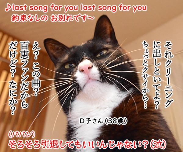 Ⅾ子さん(さよならの向う側) 猫の写真で4コマ漫画 4コマ目ッ