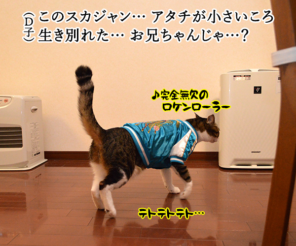 D子さん(お兄ちゃん?) 猫の写真で4コマ漫画 2コマ目ッ
