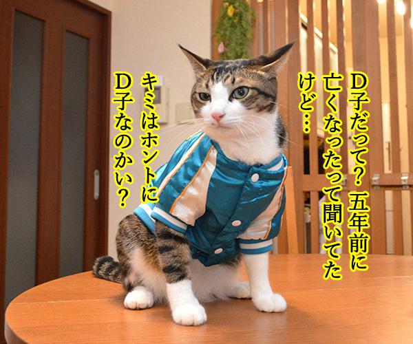 D子さん(ホントにD子?) 猫の写真で4コマ漫画 1コマ目ッ