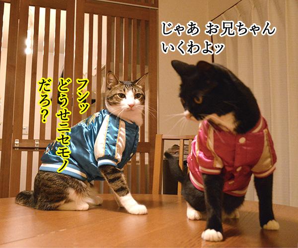 D子さん(ホントにD子?) 猫の写真で4コマ漫画 3コマ目ッ