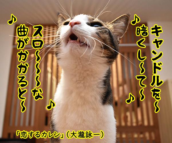 『キャンドル』でわかるあなたの〇〇〇 猫の写真で4コマ漫画 2コマ目ッ
