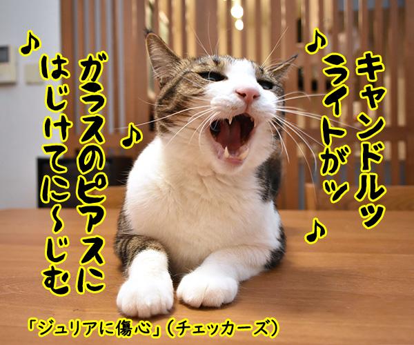 『キャンドル』でわかるあなたの〇〇〇 猫の写真で4コマ漫画 3コマ目ッ