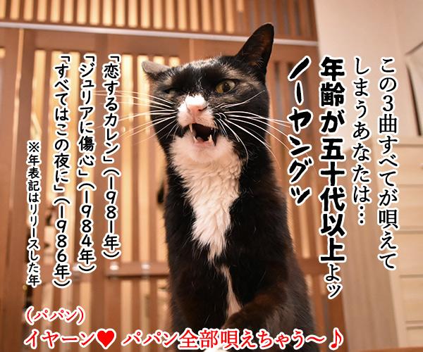 『キャンドル』でわかるあなたの〇〇〇 猫の写真で4コマ漫画 5コマ目ッ