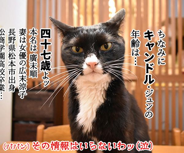『キャンドル』でわかるあなたの〇〇〇 猫の写真で4コマ漫画 6コマ目ッ