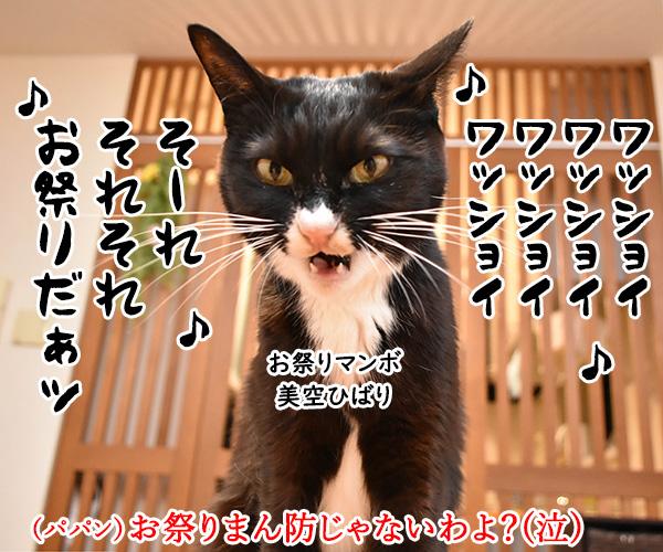 東京でも「まん延防止等重点措置」が始まったのよッ 猫の写真で4コマ漫画 3コマ目ッ