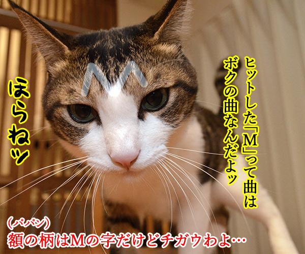 プリプリの曲で何が好きー? 猫の写真で4コマ漫画 2コマ目ッ
