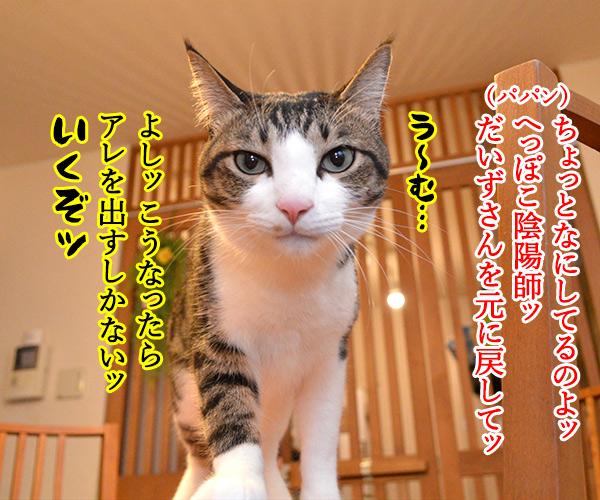 陰陽師(其の四)悪霊退散の必殺技なのよッ 猫の写真で4コマ漫画 1コマ目ッ