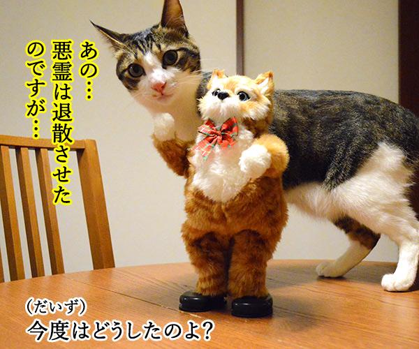 陰陽師(其の五)悪霊退散したけれど… 猫の写真で4コマ漫画 3コマ目ッ
