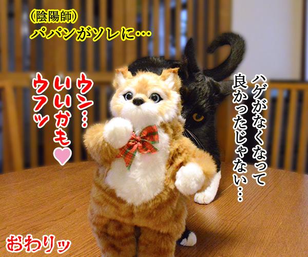 陰陽師(其の五)悪霊退散したけれど… 猫の写真で4コマ漫画 4コマ目ッ