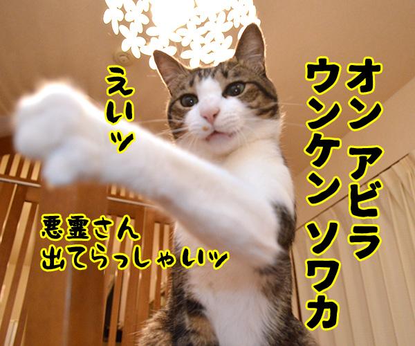 陰陽師(其の三)悪霊退治は陰陽師よねッ 猫の写真で4コマ漫画 2コマ目ッ