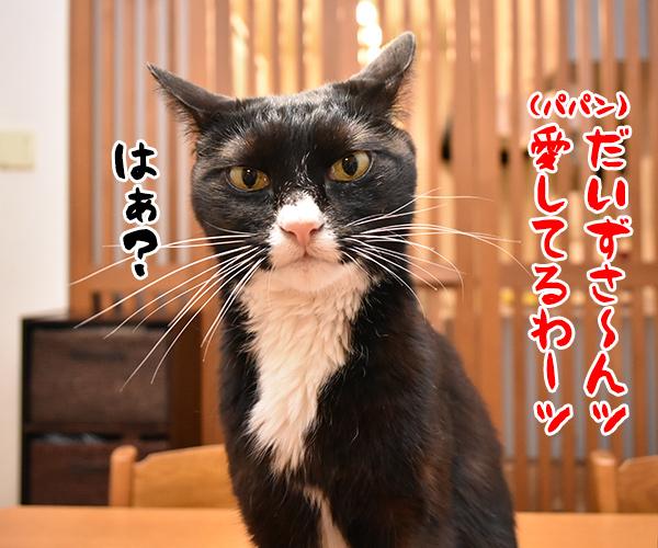 猫写真4コマで曲名クイズなのッ 猫の写真で4コマ漫画 1コマ目ッ