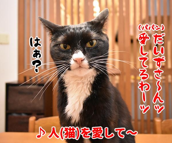 猫写真4コマで曲名クイズの答えは? 猫の写真で4コマ漫画 1コマ目ッ