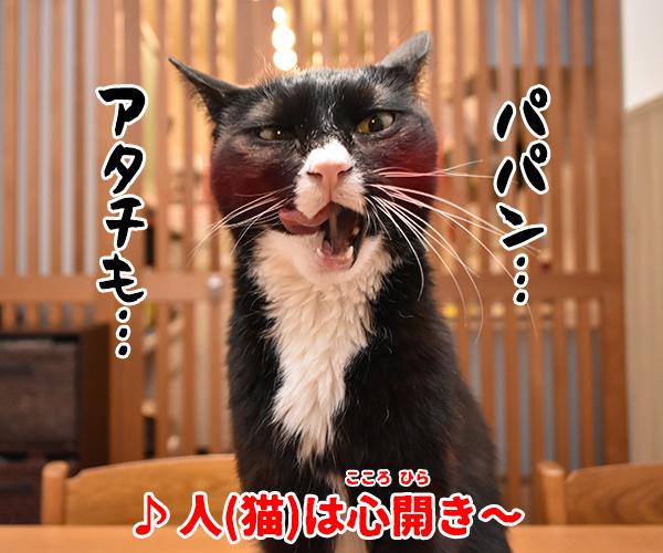 猫写真4コマで曲名クイズの答えは? 猫の写真で4コマ漫画 2コマ目ッ