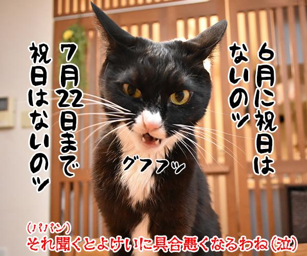 みんなー 五月病になってなーい? 猫の写真で4コマ漫画 4コマ目ッ