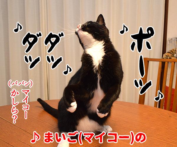 猫写真4コマで曲名クイズの答えは?(二回目) 猫の写真で4コマ漫画 2コマ目ッ
