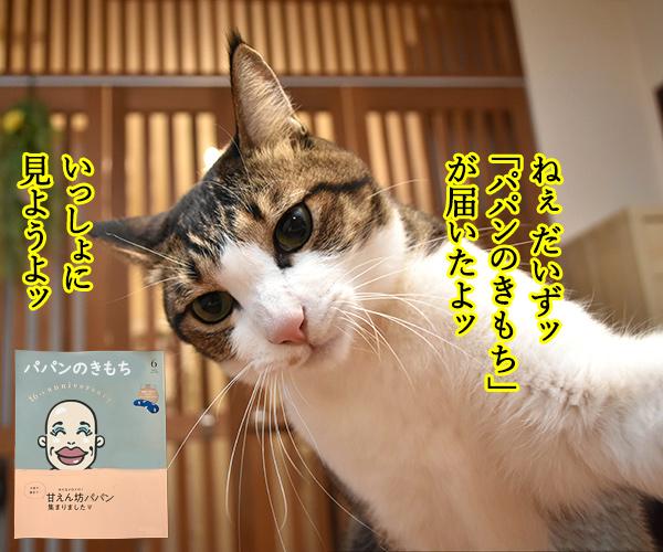 「パパンのきもち」6月号が届いたよッ 猫の写真で4コマ漫画 1コマ目ッ
