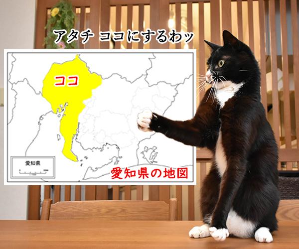 猫写真4コマで曲名クイズなのッ(三回目) 猫の写真で4コマ漫画 3コマ目ッ