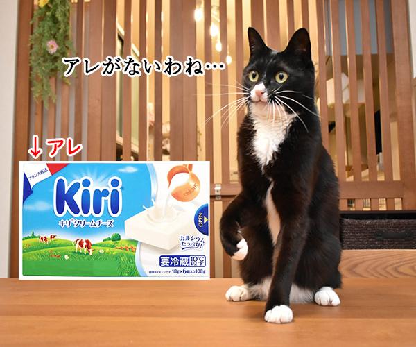 猫写真4コマで曲名クイズなのッ(三回目) 猫の写真で4コマ漫画 4コマ目ッ