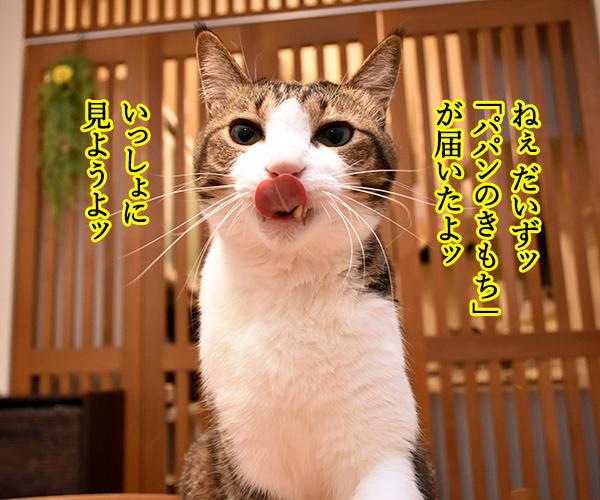 「パパンのきもち」7月号が届いたよッ 猫の写真で4コマ漫画 1コマ目ッ