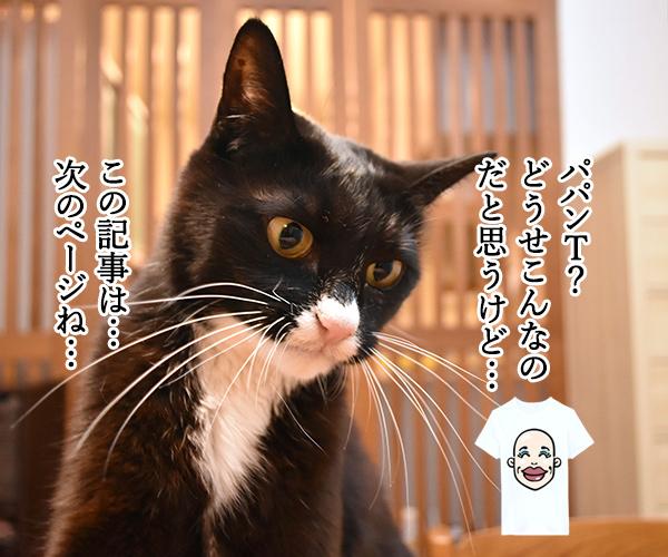 「パパンのきもち」7月号が届いたよッ 猫の写真で4コマ漫画 3コマ目ッ