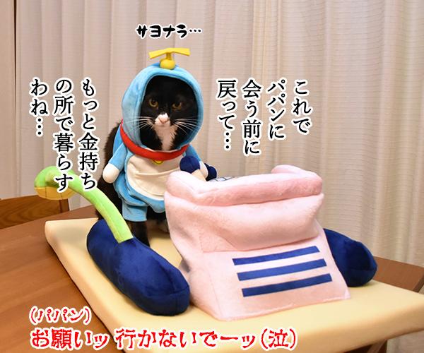 ドラえもんのタイムマシンベッドが届いたのよッ 猫の写真で4コマ漫画 5コマ目ッ