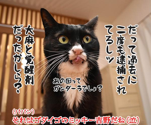 ミッ〇ーが強制わいせつで逮捕なのッ 猫の写真で4コマ漫画 4コマ目ッ